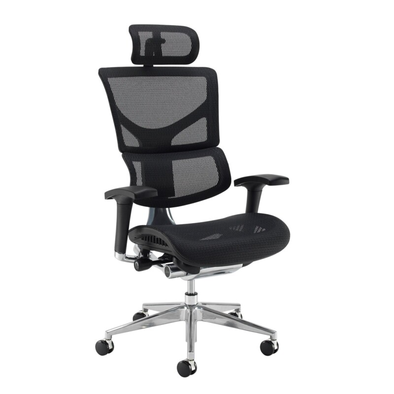 Dynamo Ergo mesh back posture chair with chrome base and head rest - black - Furniture