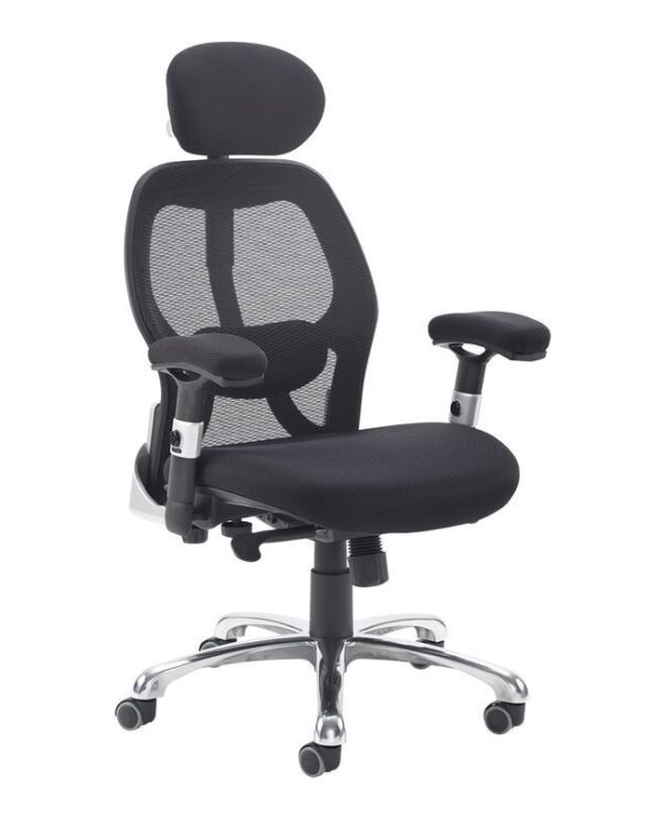 Sandro mesh back executive chair with black air mesh seat and head rest - Furniture